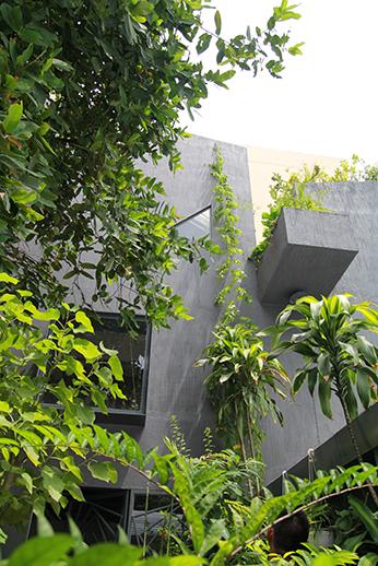 TA-AR house.03