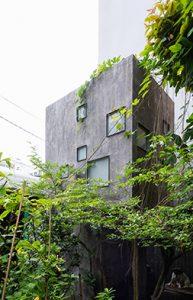 TA-AR house.04